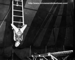 Joanne Day on the swinging ladder, Duke of Paducah Circus 1960
