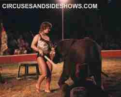 franzen Bros. Circus elephant act