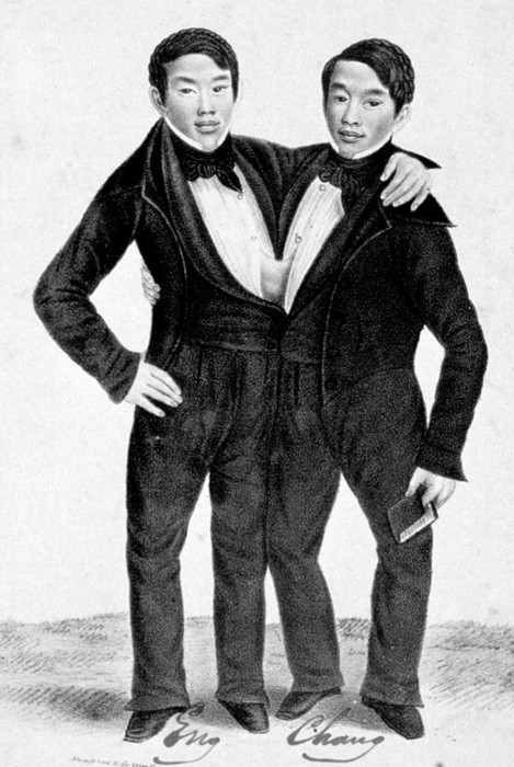 Sideshow Performers and acts