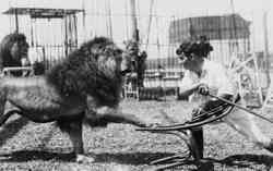 Clyde Beatty Lion Trainer