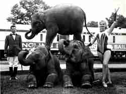 John and Mary Ruth with elephants