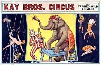 Kay Bros Circus Poster
