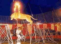 L E Barnes Circus Dave Hoover