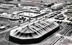 Ringling Circus Winter Quarters 1956
