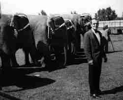 Circus elephant trainer Rex Williams