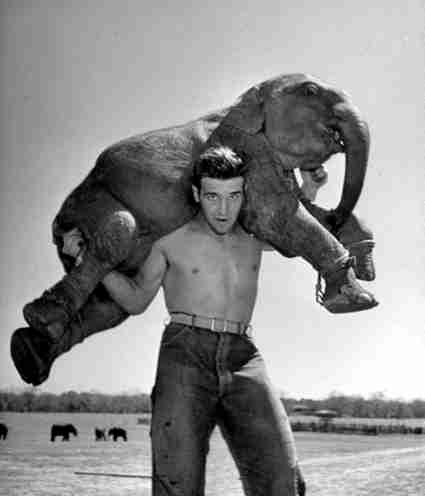 Elephant trainer Rex Williams